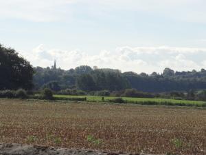 Stratford upon Avon and Warwick 002