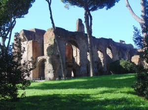 View of the Palatine Hill