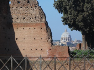 St. Peter's in the background from the Palatine Hill