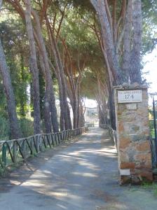 A private drive to a villa.
